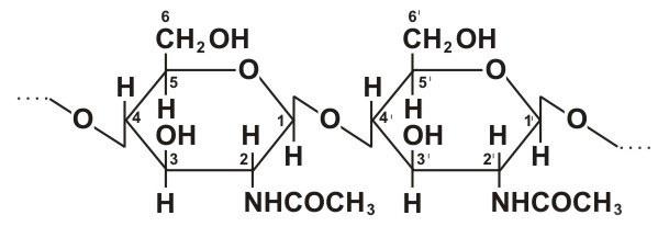 Хитин, формула, здоровье.